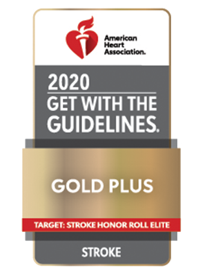 American Heart Association Get With The Guidelines Gold Plus Target: Stroke Honor Roll Elite - Stroke, 2020